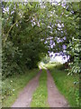 TG0627 : The entrance to Old Hall Farm by Adrian Cable