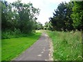 Dist:0.4km<br/>Path leading to Broadwood Loch.