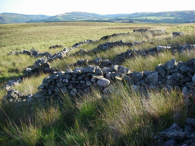 Remains of former sheepfold