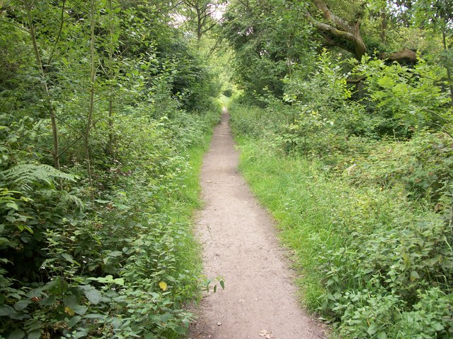 Public Bridleway on Naphill Common