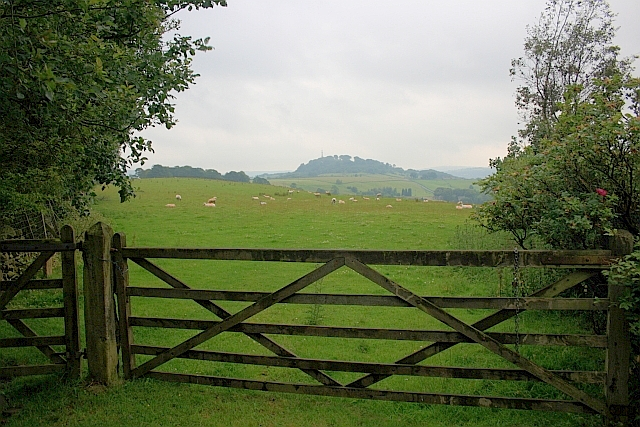Gate into Field near Windy Arbour Hotel