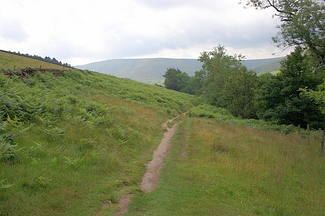 Path Through Field