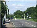 TL4401 : Traffic lights at Bell Common near Epping by Malc McDonald