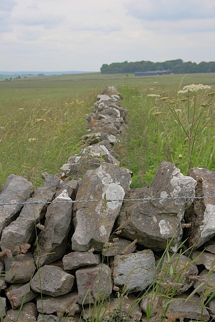 Drystone Wall Junction