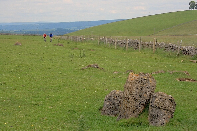 Limestone Outcrop in a Field on Gratton Moor