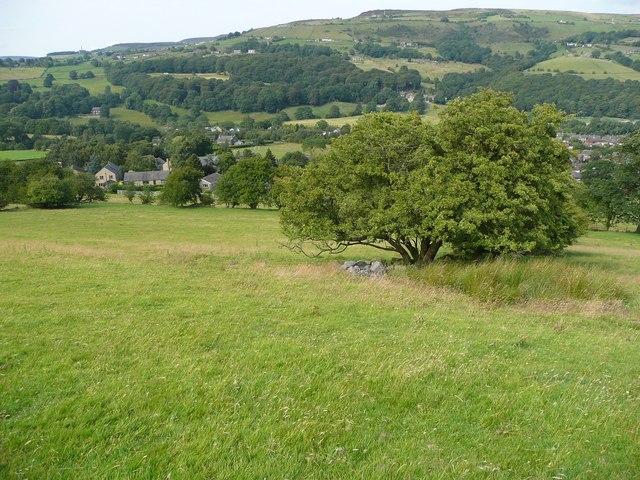 Hebden Royd Footpath 50, eastern branch, Mytholmroyd