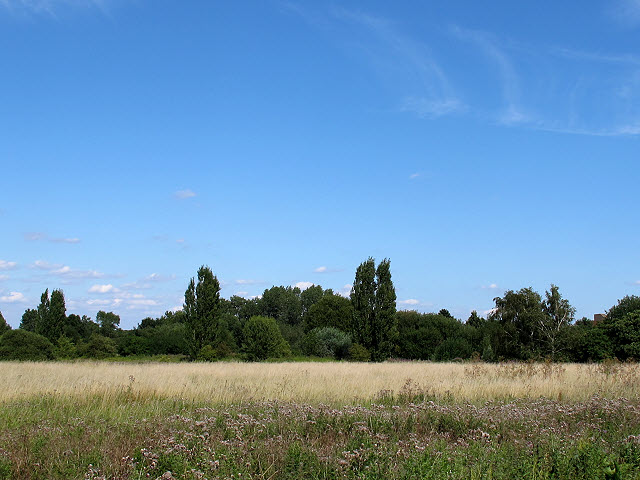 Open grassland in South Norwood Country Park