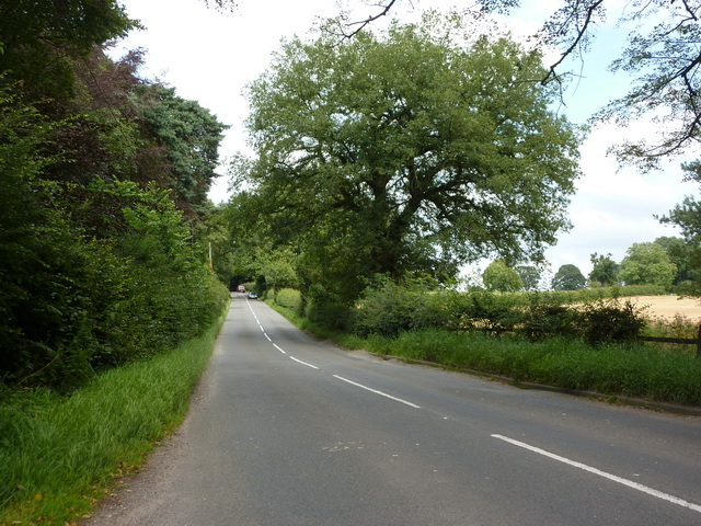 Old Park Road near Philip's Hill