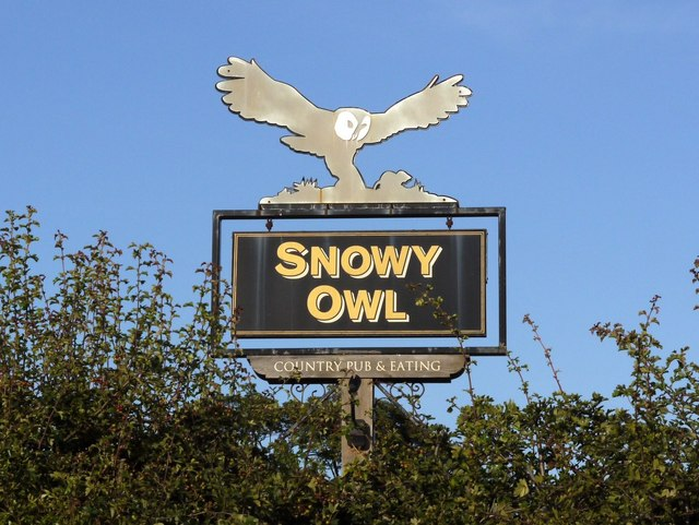 'Snowy Owl' pub sign