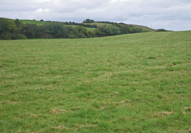 Rising ground grassland with wooded ridge beyond