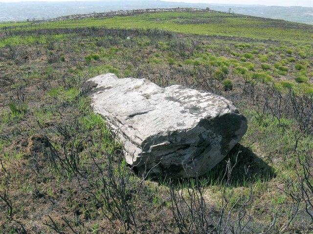 Penyrheolddu Standing Stone