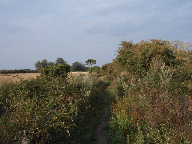 Restricted Byway, Exning