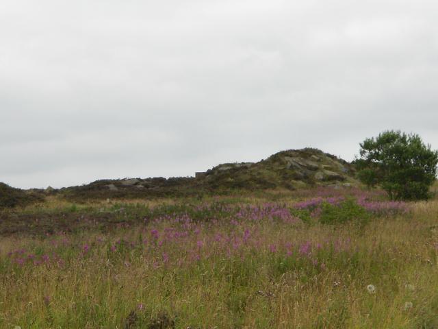 Penistone Hill