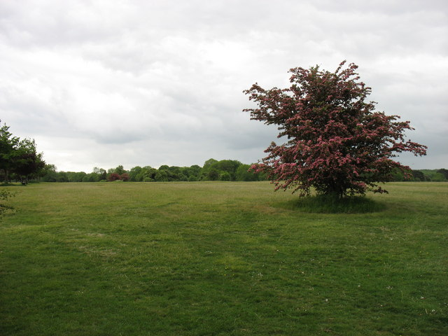 On Durdham Downs, Bristol