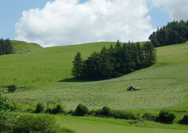 Hay making near Ysbyty Cynfyn, Ceredigion
