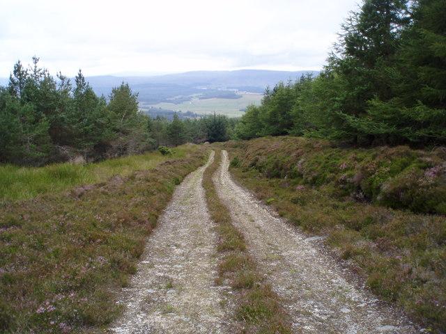 Track on Meall Mor