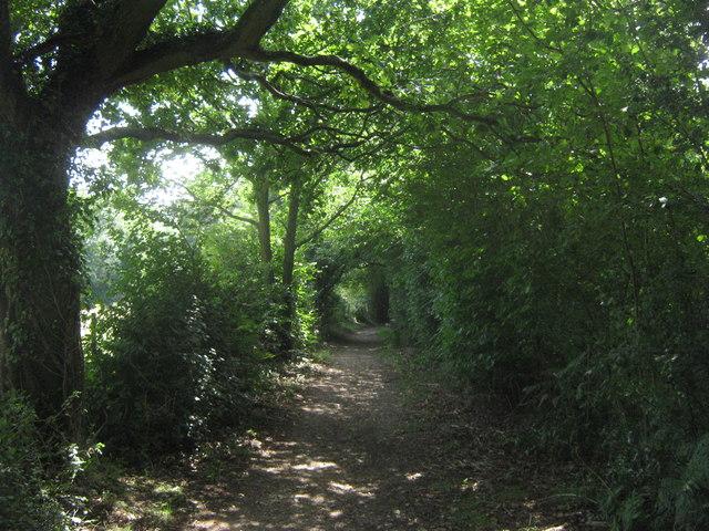 Bridleway near Snag Farm