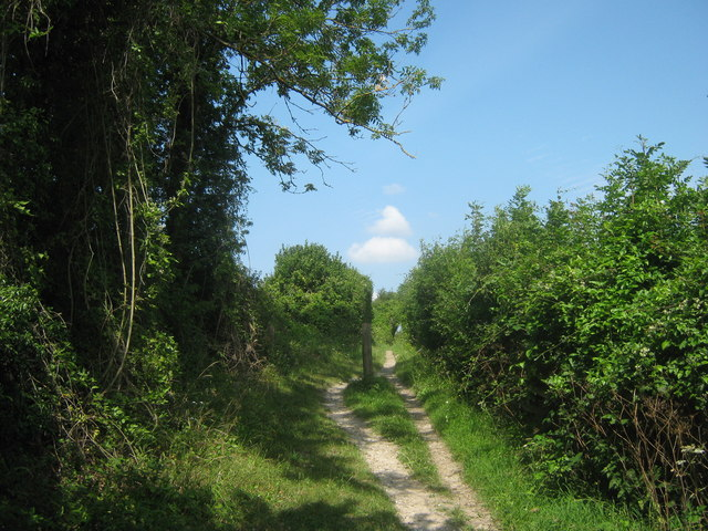 Footpath beside Cudham Lane North
