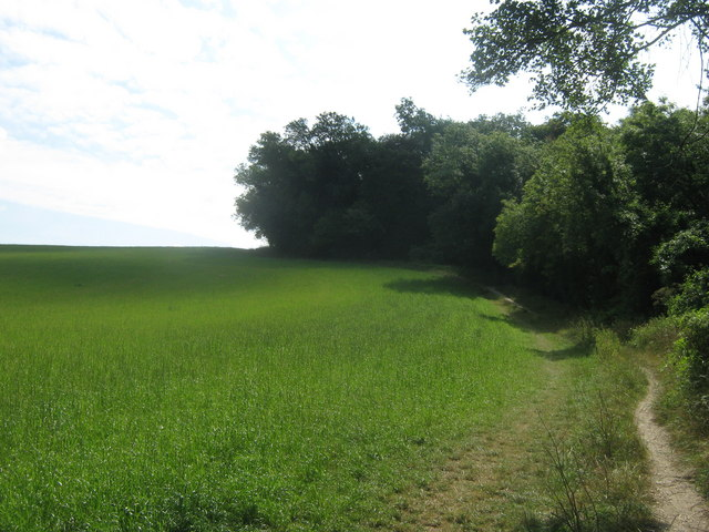 Footpath to Hazelwood