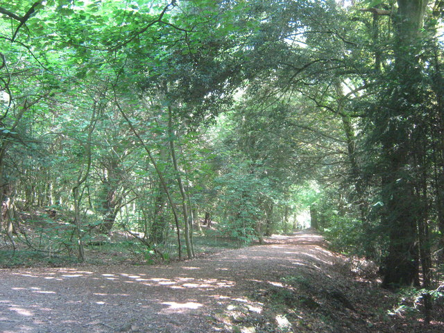 Permissive path in Cuckoo Wood