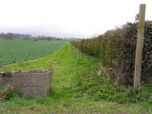 Footpath, Carkin Fields