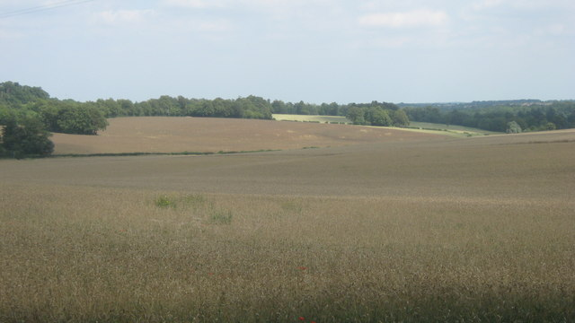 Fields near Bogey Lane