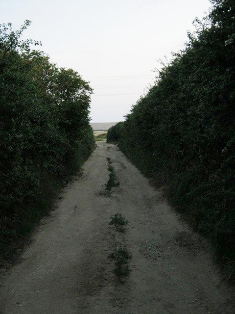 Pirates Lane