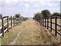 SK3829 : Bridleway over a ridge and furrow field by Ian Calderwood