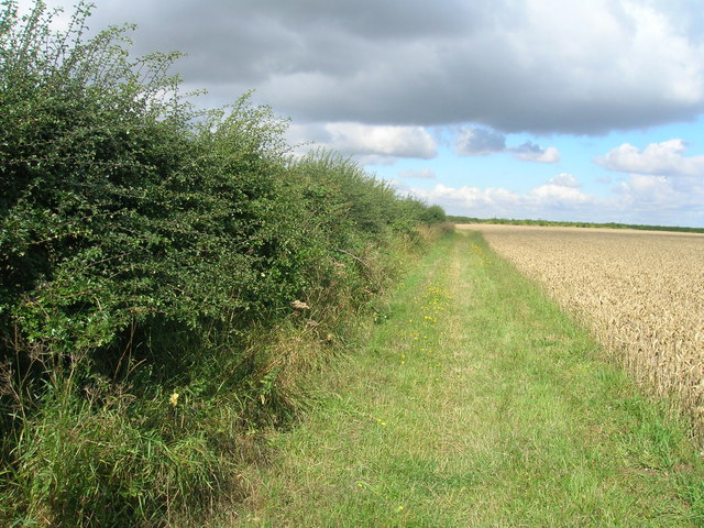 Viking Way heading west, Elsham Wolds