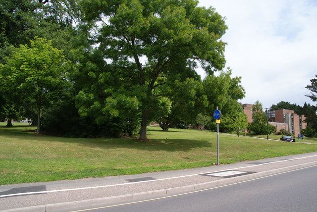 Green space on Prince of Wales Road