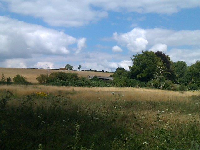 View across fields near Kings Somborne