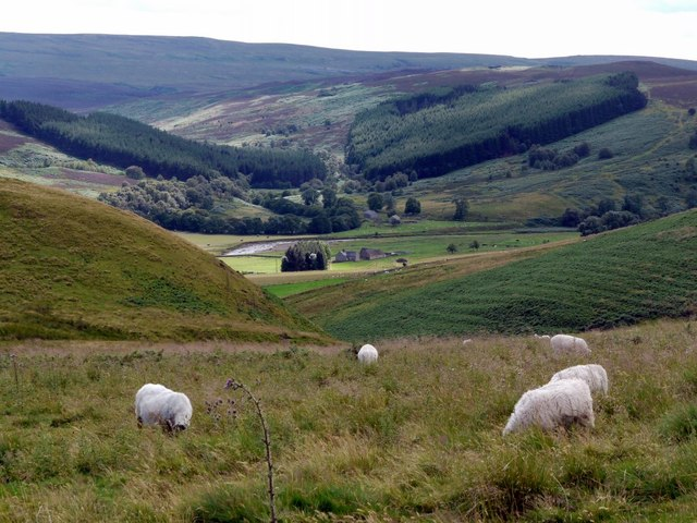 Coquetdale near Barrow from Clennell Street