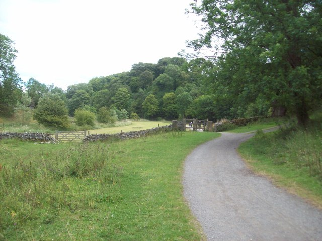 Lane near the River Bradford
