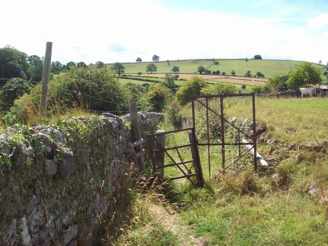 Walled Track near Bakewell