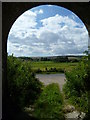 TQ0211 : View from disused tunnel under railway at Amberley by Shazz
