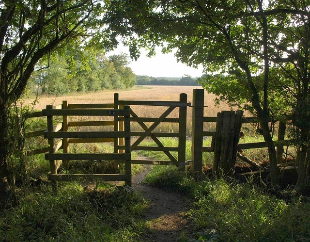 Gate, Parsonage Wood