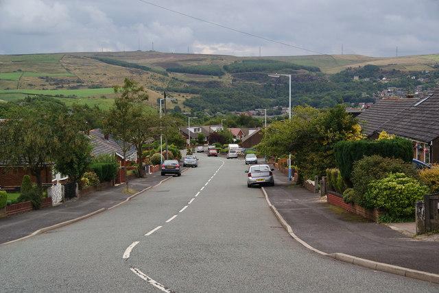 Trent Road, Rushcroft