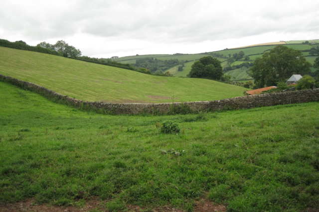Stone boundary wall, Higher Yetson