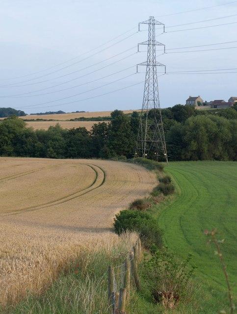 Field boundary, Nidd valley