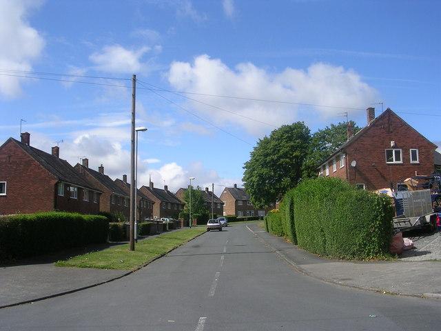 Landseer Road - Landseer Drive