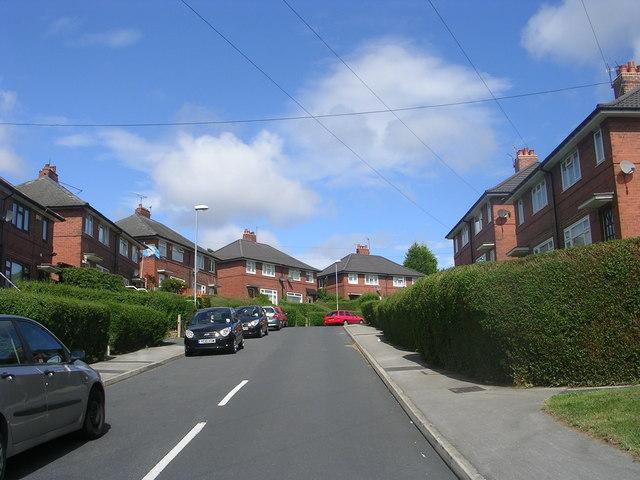 Landseer Mount - Outgang Lane