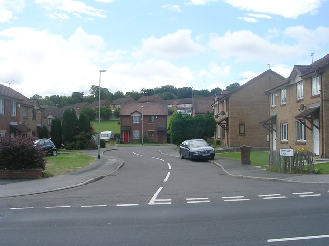 Raynville Place - Raynville Road