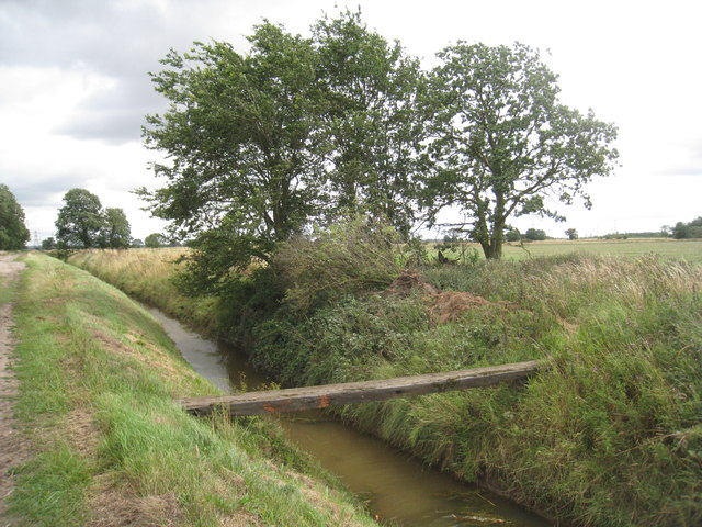 Plank Bridge (2)