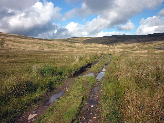 Farmers' track above Newby Cote