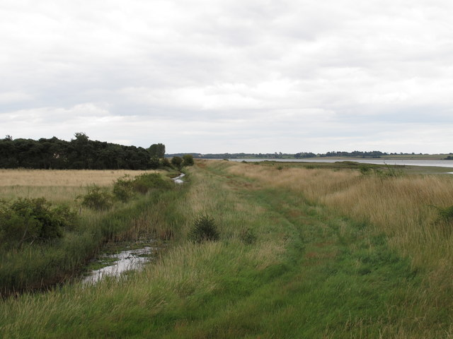 Looking east along the footpath