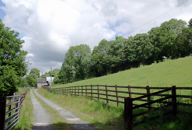 Farm road and pasture near Llangybi, Ceredigion