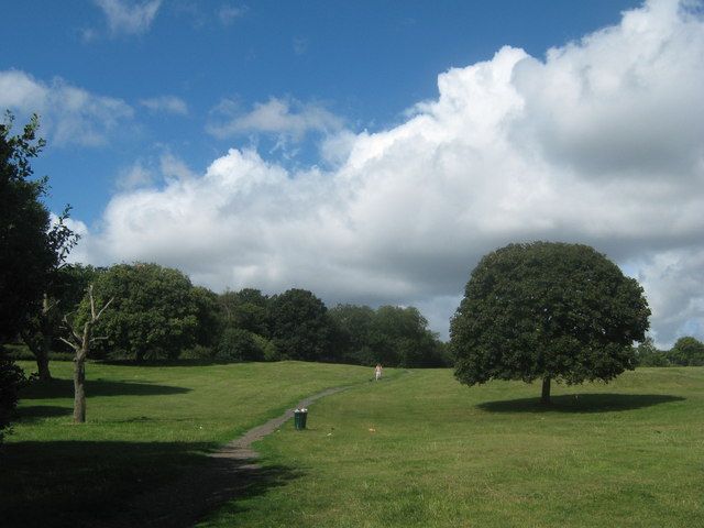 Recreational Ground beside Bursted Wood
