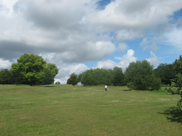 Recreational Ground beside Bursted Wood (2)