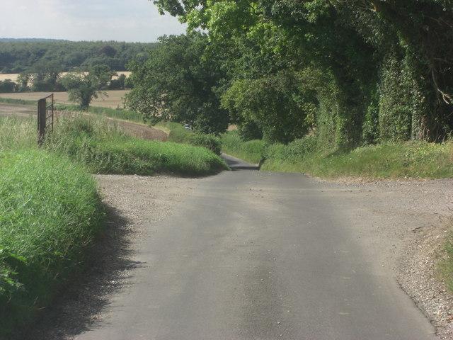 Lane beside South Wood