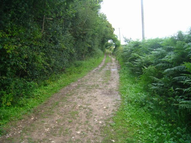 Path & cycle track